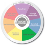 Multicolored wheel divided into 7 equal sections Recruitment, Training and Development, Benifits and Compensation, Communicating, Employee Relations, Recordkeeping, and Health safety and security with Legal compliance written on the outer edge and company strategy in the center communication is emphasized