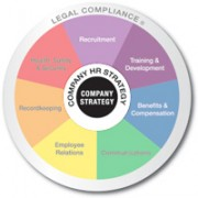 Multicolored wheel divided into 7 equal sections Recruitment, Training and Development, Benifits and Compensation, Communicating, Employee Relations, Recordkeeping, and Health safety and security with Legal compliance written on the outer edge and company strategy in the center is emphasized