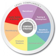 Multicolored wheel divided into 7 equal sections Recruitment, Training and Development, Benifits and Compensation, Communicating, Employee Relations, Recordkeeping, and Health safety and security with Legal compliance written on the outer edge and company strategy in the center health safety and security is emphasized