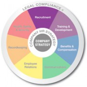 Multicolored wheel divided into 7 equal sections Recruitment, Training and Development, Benifits and Compensation, Communicating, Employee Relations, Recordkeeping, and Health safety and security with Legal compliance written on the outer edge and company strategy in the center, recruitment is emphasized