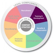 Multicolored wheel divided into 7 equal sections Recruitment, Training and Development, Benifits and Compensation, Communicating, Employee Relations, Recordkeeping, and Health safety and security with Legal compliance written on the outer edge and company strategy in the center training and evelopment is emphasized