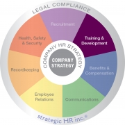 Image of Training & Development highlighted on our HR Wheel of services.